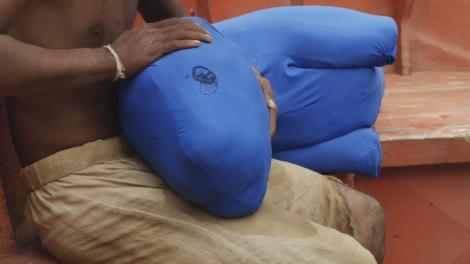 The blue stuffed creature allowed the actor'to appear as though he were actually petting the tiger.